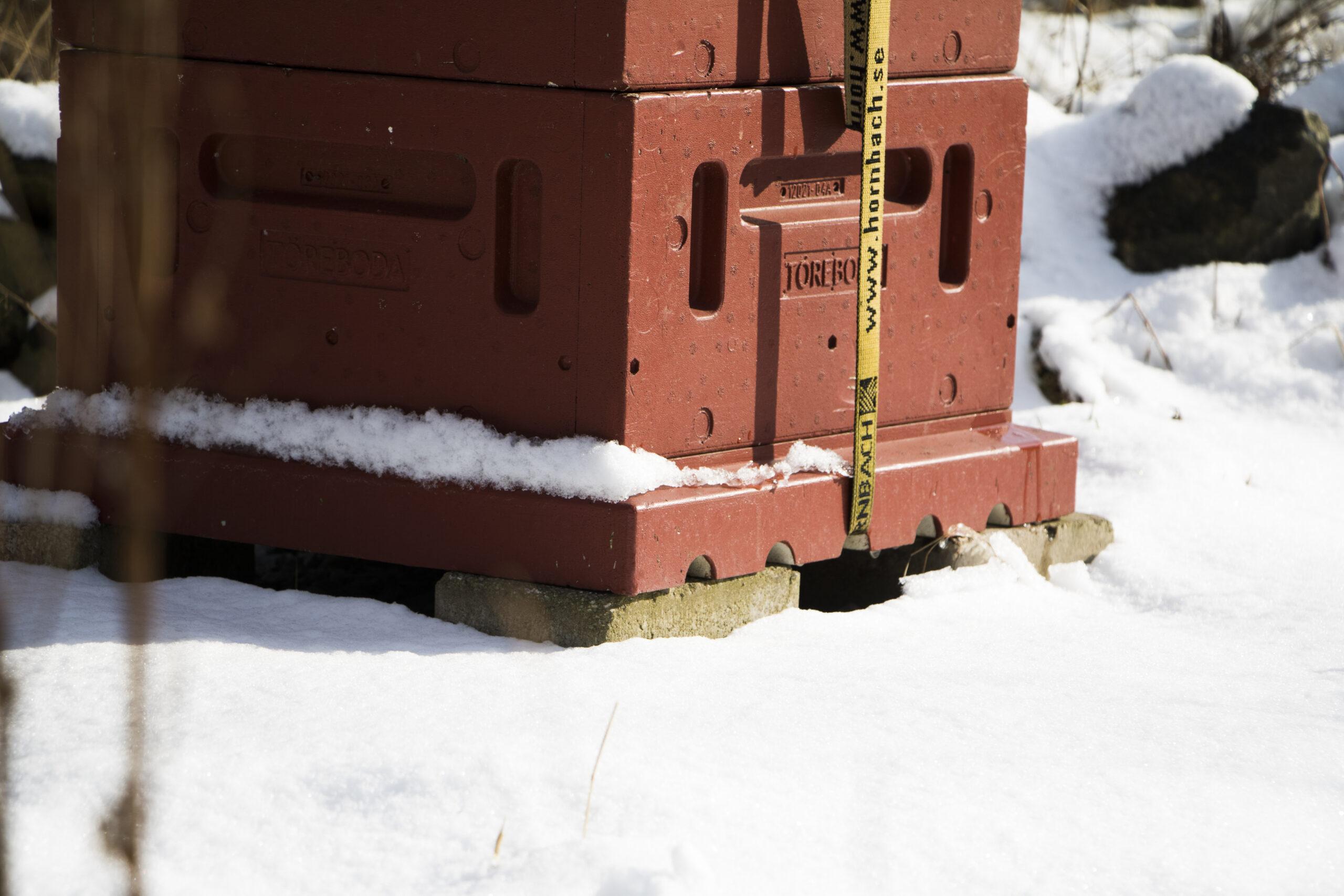 Biodling vintertid